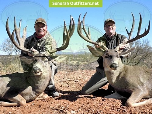 Sonoran Desert Mexico Guided Hunts